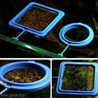 Tropical Fish Food Floating Pellets Flakes Aquarium Square-Ring Feeding Float