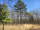 45 wooded acres in Mark Twain National Forest
