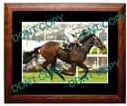 BLACK CAVIAR HORSE RACING CHAMPION A3 LARGE PHOTO 6