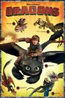 HOW TO TRAIN YOUR DRAGON CLASS LEADERS 24x36 MOVIE POSTER Cartoon Dragons 2