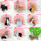 Pet Puppy Accessories Collar Necklace Hot Pendant Disc Disk Dog Tag Metal Enamel