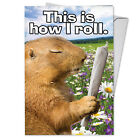 C3956BDG Funny Single Birthday Greeting Card How I Roll with Envelope