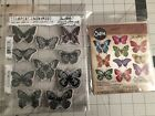 Tim Holtz Stampers Anonymous Flutter Stamp And Die Set