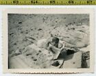 Vintage 1940s COMICS photo Beefcake Beach Boy Reads the Newspaper Funny Pages