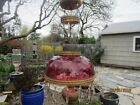 Antique Oil Hanging Parlor Lamp with Cranberry Shade (Electrified)