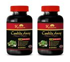 Aloe Vera pills CANDIDA AWAY PLUS natural remedy for asthma 2 Bottle