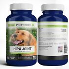 Premium Canine Glucosamine Chondroitin MSM for Dog Hip  Joint Beef Chews USA