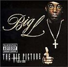 The Big Picture by Big L