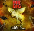 Mr. Big : What If... CD Album with DVD (2011) Expertly Refurbished Product