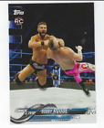 2018 Topps WWE Variations Guide 57