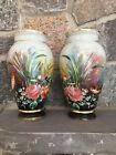 Pair 2 Antique Bristol Glass Handpainted Vases Flowers Birds