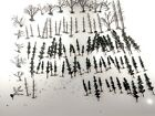 HO Scale EVERGREEN DECIDUOUS TREES 59 Trees 41 Armatures USED 3 5