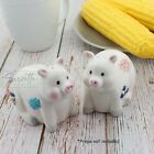 White Pig Salt  Pepper Shakers Set Cute Patchwork Pig Collectible Salt Shakers