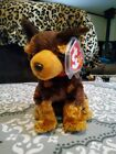 Ty Store Exclusive Beanie Baby ~ AMIGO the Dog (6 inch) 2003 ~Plush Toy~ Retired