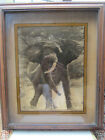 DENNIS CURRY PRINT ELEPHANTON GLASS WOODFOR CHARITY 1976 SIGNED 24 X 20