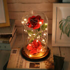 Beauty and The Beast Red Rose Glass Lamp Dome Valentine LED Lighted Gift US