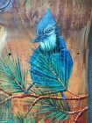 Cabin Art Blue Jay Old weathered board Hand painted original