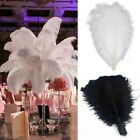 Blackwhite Large Natural Ostrich Feathers Plume Crafts Wedding Party Decoration