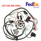 125 250CC Motorcycle Stator CDI Coil Electric Wiring Harness Wire Loom Assembly