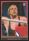 2015 Topps WWE Road to Wrestlemania Trading Cards 22