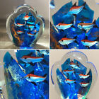 Vintage Art Glass Fish Tank Aquarium Paperweight 425X45