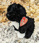 TY Bo the Portuguese Water Dog Beanie Baby 2.0 Babies Beanies Obama First Pet