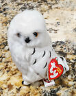 TY Knowledge the snowy white owl beanie baby babies beanies Borders exclusive