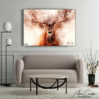 Stag Wall Art Painting Deer Print Pop Art Watercolor Canvas Framed Wall decor