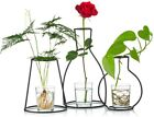 Set of 3 Creative Desktop Planter Set with Glass Cup Vases Iron Metal Stand