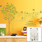 Removable Photo Frame Tree Leaves PVC Mural Art Decal Wall Sticker Home DIY Hot
