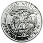2013 Somali African Wildlife Elephant 1oz .999 Silver coin. German Minted