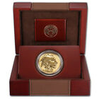 2013 W American Gold Buffalo Reverse Proof 1 oz 50