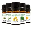 5ml Essential Oils 100 Pure  All Natural Free Shipping