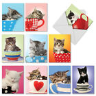 M3969 Cup Cats 10 Assorted Blank All Occasion Note Cards Matching Envelopes
