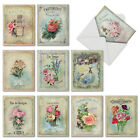M6472OCB Scentiments 10 Assorted Blank All Occasion Note Cards Envelopes