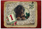 B1760GNYG Box Set of 12 Lacy Holidays Happy New Years Dog Greeting Cards w Env