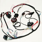 BUGGY WIRING HARNESS GY6 150CC 125CC ELECTRICS SCOOTER WIRE LOOM STATOR SOLENIOD
