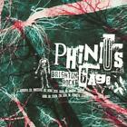 Phinius Gage : Brighton Rock CD (2007) Highly Rated eBay Seller Great Prices