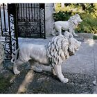 Male African Lion Statue Exotic Big Cat King of the Jungle Beasts Art Sculpture