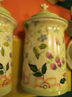 Tracy Porter Evelyn Collection Hand Painted 11.25 x 6 inch wide Canister