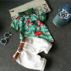2pcs Toddler Kids Baby Boy Flower Tops Shirt + Short Pants Outfits Set US Stock