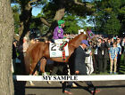 CALIFORNIA CHROME 8 by 10 PHOTO 2014 BELMONT STAKES HORSE RACING