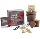 Bonsai Starter Kit Grow 4 Bonzai Trees from Seed Complete Guide