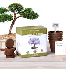 Bonsai Starter Kit Grow 4 Bonsai Trees from Seed Detailed Growing Guide Gift