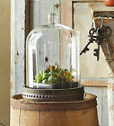 Rustic Terrarium Bell Dome Glass Cloche Display Distressed Wood Base 5 x 8