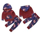 Newborn Infant Baby Boy Girls Hooded T shirt Tops+Pants Outfit Clothes Sets