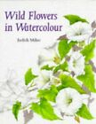 Wild Flowers in Watercolour by Milne Judith Hardback Book The Fast Free