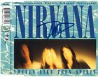 NIRVANA Smells Like Teen Spirit DAVE GROHL F/Fighters Nevermind Autograph SIGNED