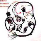 COMPLETE ELECTRICS WIRING HARNESS FOR CHINESE DIRT BIKE ATV QUAD 150 250CC 300CC