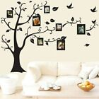 Sale 2018 Family Tree Of Life Wall Sticker Decal Mural DIY Art Vinyl Removable